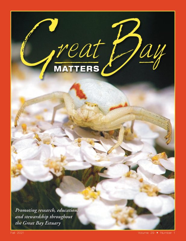 Great Bay Matters changes hands